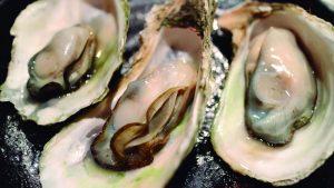 Padrão das ostras para consumo está diretamente ligado a questões sanitárias. Foto: jsbaw/Pixabay