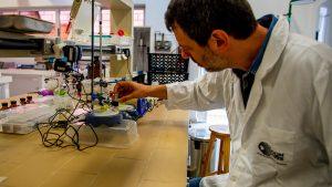 Grupo de pesquisa coordenado por Aldo Zarbin foi um dos primeiros no Brasil na preparação de nanomateriais com custos mais baixos e mais eficiência. Foto: Marcos Solivan/Sucom-UFPR